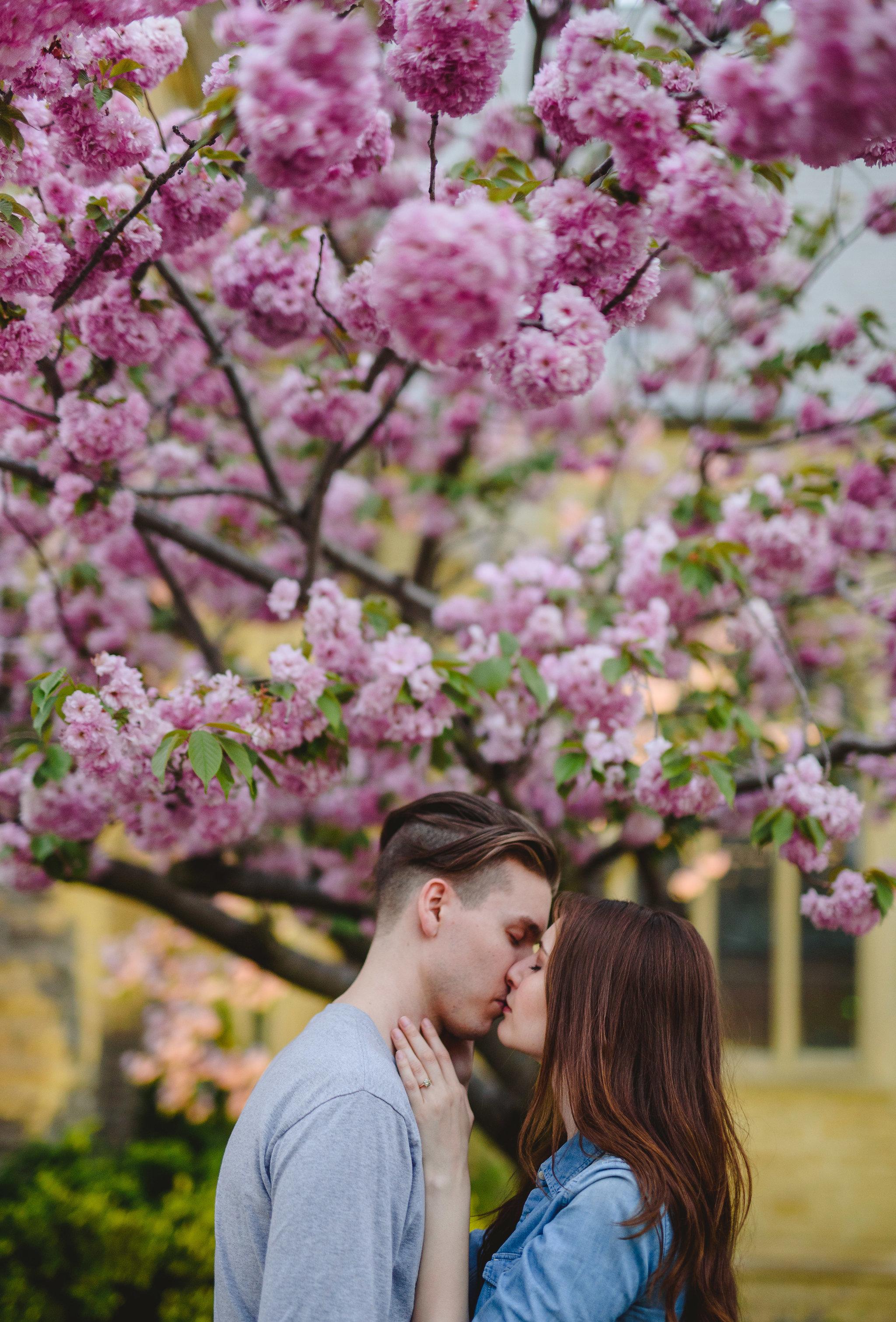 Spring-Blossom-Engagement