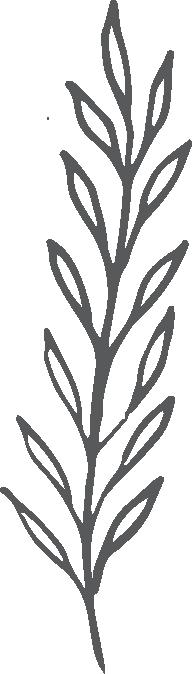 Leaf-by-Crocus-Paperi
